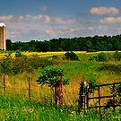 Rural View by michaelasamples