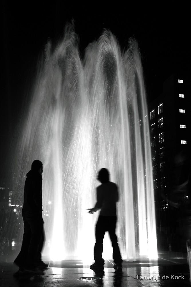 Fountain by Night by Tamaryn de Kock