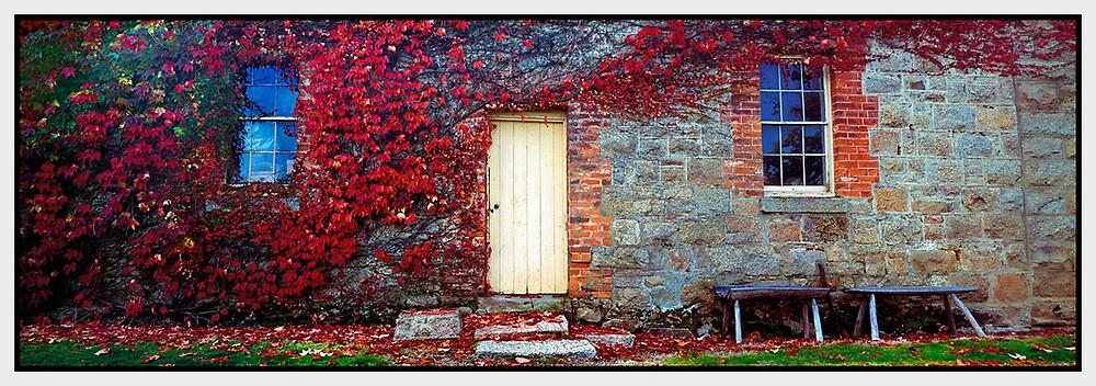 Autumn's Delight - Beechworth VIC by Chris Munn