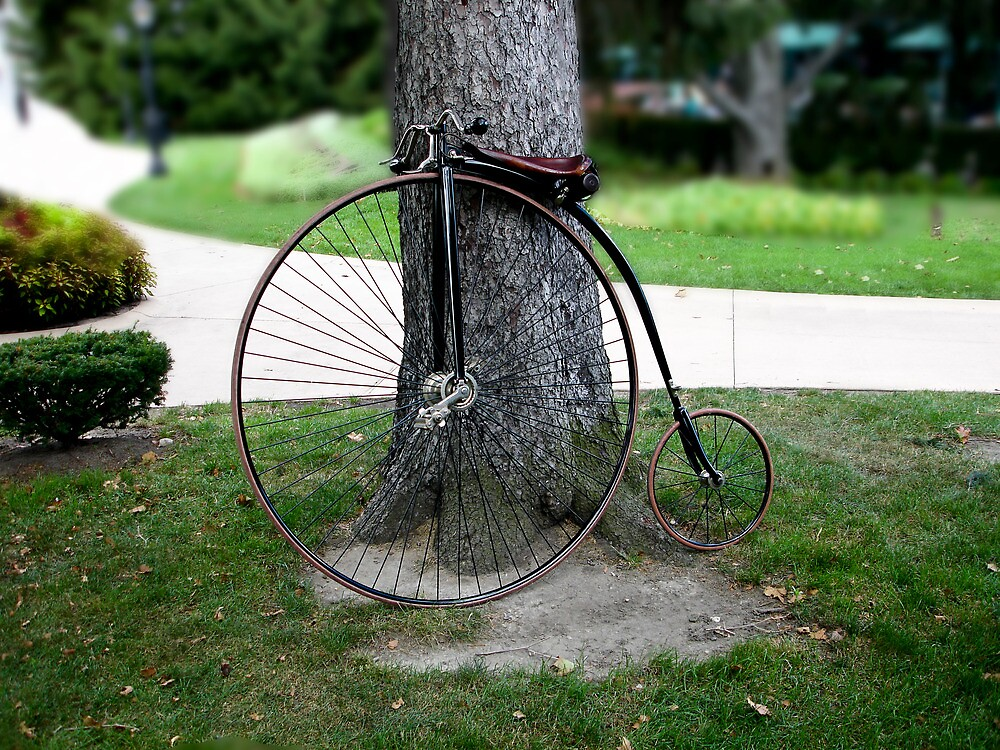 Old Bike Leaning of Tree by tomfloyd
