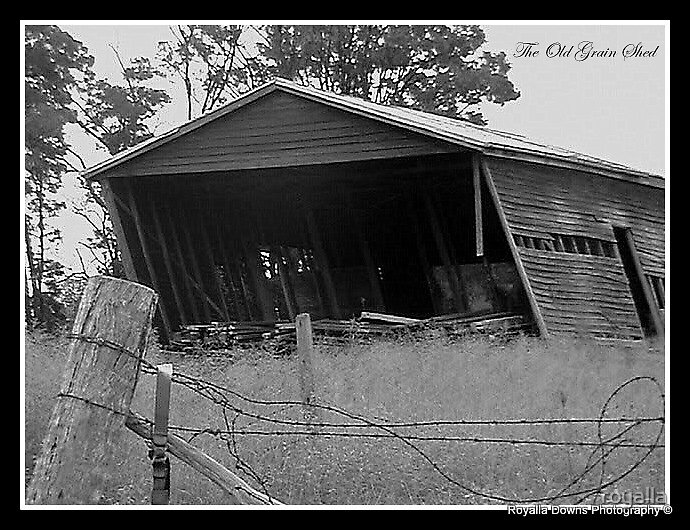 the grain shed by royalla