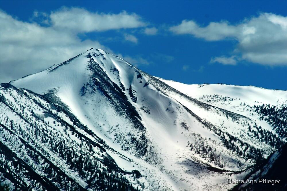 Sierra Nevada by Debra Ann Pflieger