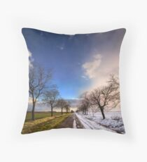 A change of seasons Throw Pillow