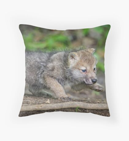 Learning to Stalk Throw Pillow