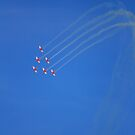 Roulettes  by Michelle Cocking