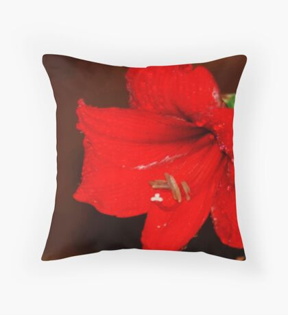 REFRESHED AMARILLA Throw Pillow