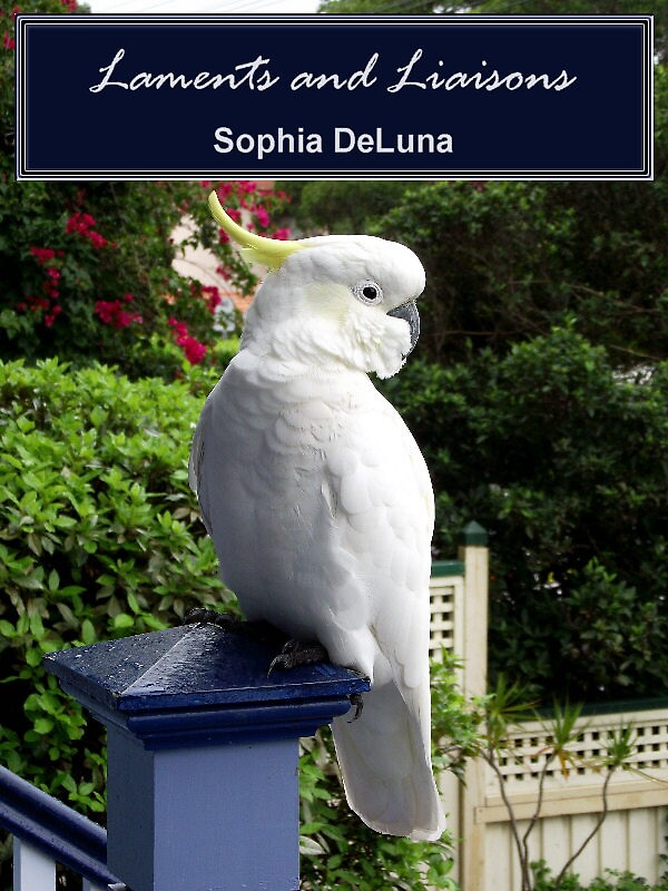 Ebook Cover_Laments and Liaisons by SophiaDeLuna