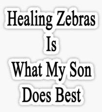Healing Zebras Is What My Son Does Best  Sticker