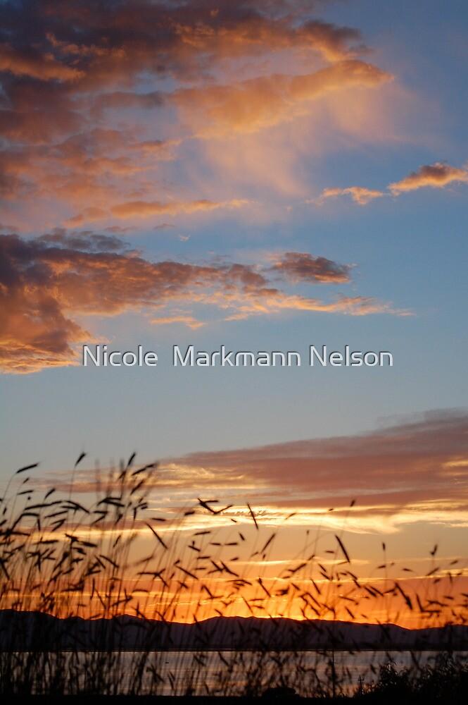 Running Clouds by Nicole  Markmann Nelson