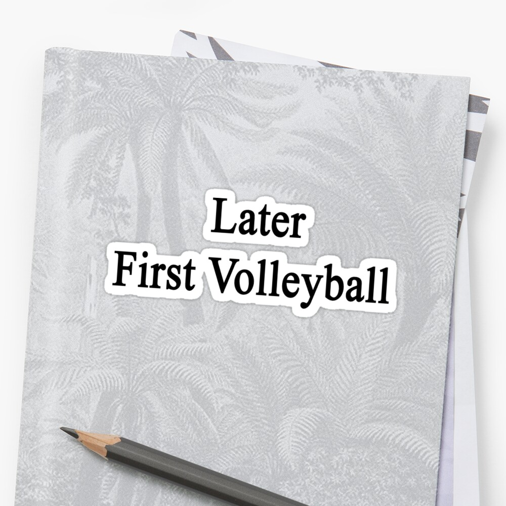 Later First Volleyball  by supernova23