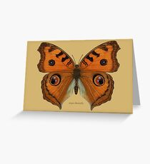 Argus Butterfly Greeting Card