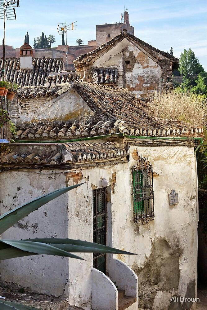 Spanish Living... Granada Spain by Alison  Brown