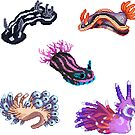 Nudibranch 4 by siins