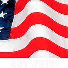 American Flag by George Robinson