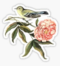 Watercolor bird and flower peony Sticker