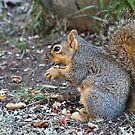 More PLEASE! by Barb Miller