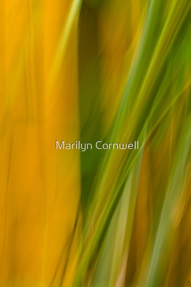 Good Vibrations by Marilyn Cornwell
