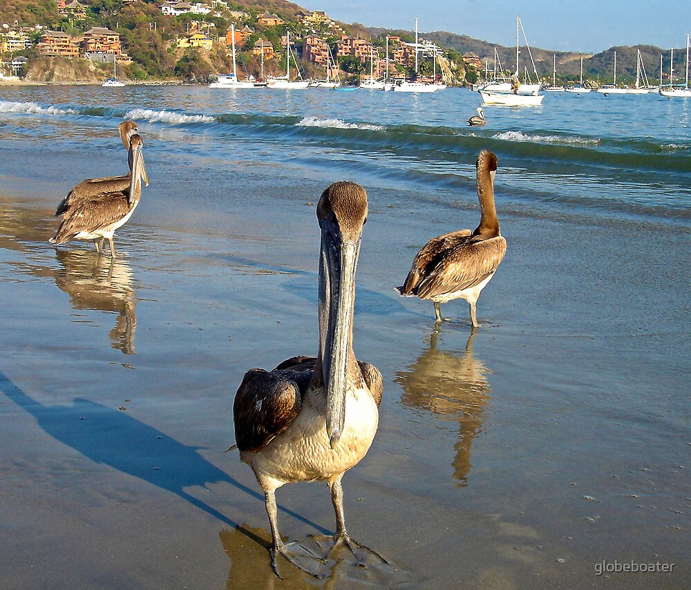 Beach-Guardians  by globeboater
