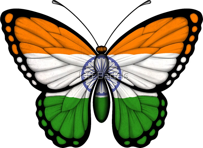 "Indian Flag Butterflies: ""Indian Flag Butterfly"" Stickers By Jeff Bartels"