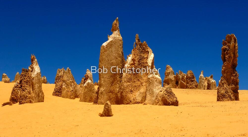 Nambung Desert Western Australia by Bob Christopher