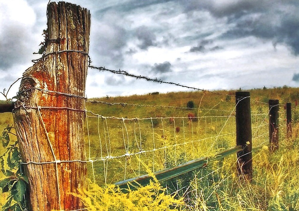 Fence Along a Country Road by Nadya Johnson