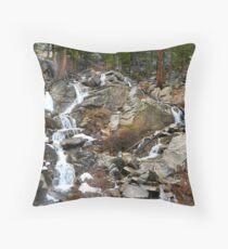 Grover Hot Springs, California Throw Pillow