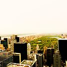 Central Park From Above - New York City by Vivienne Gucwa