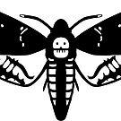 Death's-Head Hawk Moth by Mary Capaldi