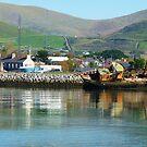 Dingle, Ireland by Sue Downey