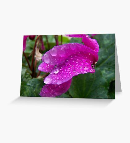 Drips of rain Greeting Card