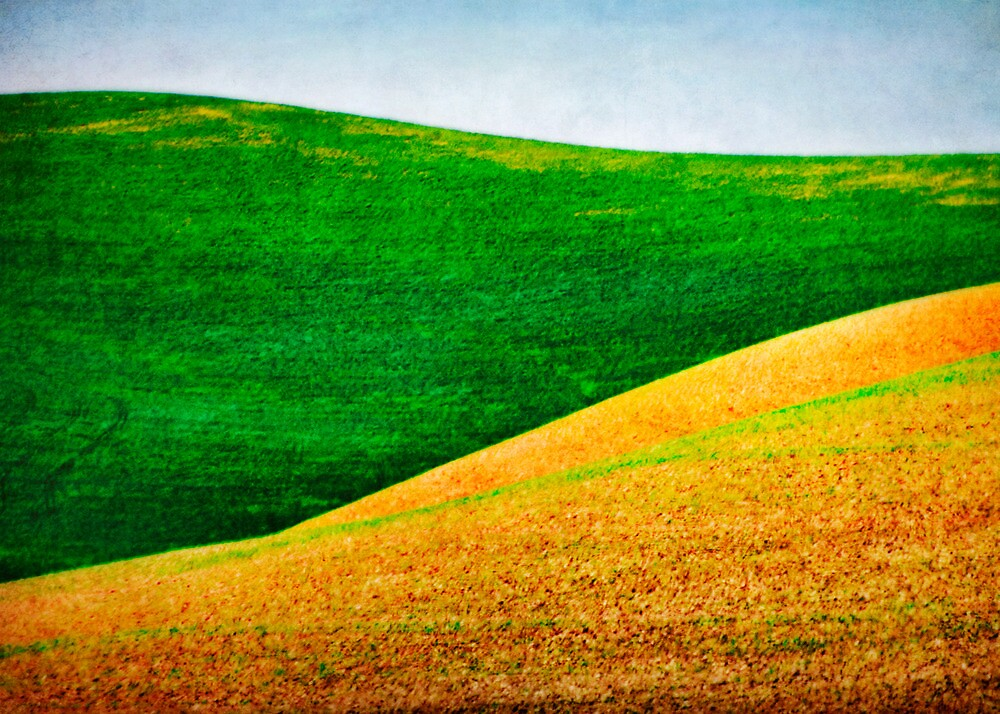 Green and Gold by Lynnette Peizer
