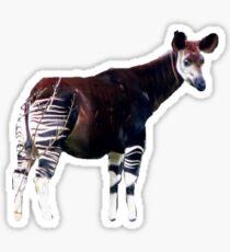 Okapi sticker Sticker