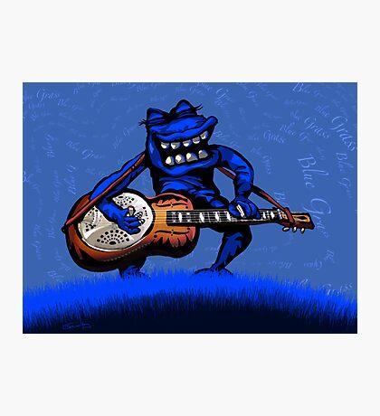 Bluegrass Dobro Photographic Print