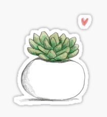 Succulent in Plump White Planter Sticker