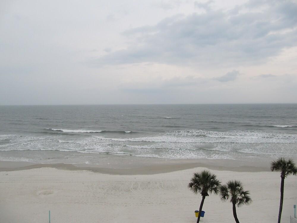 Florida Beaches by aikoaiko4