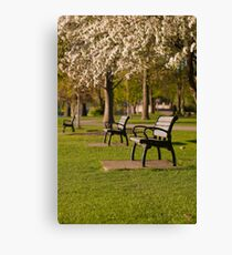 Empty Seats in Spring Canvas Print