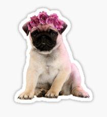Hipster Pug Puppy Sticker