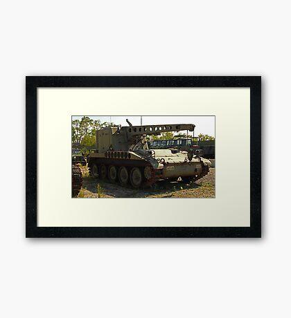 Armored Crane Image 7854 Framed Print