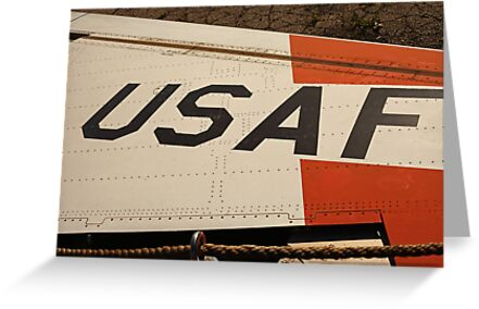 USAF Logo on Wing by Thomas Murphy