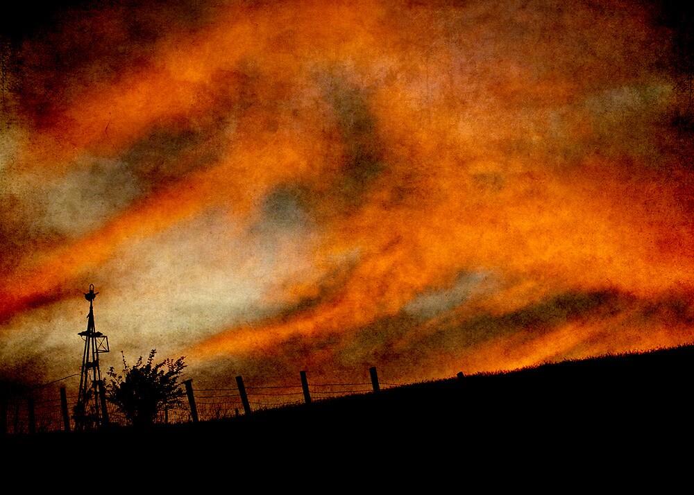 Palouse Sunset by Lynnette Peizer