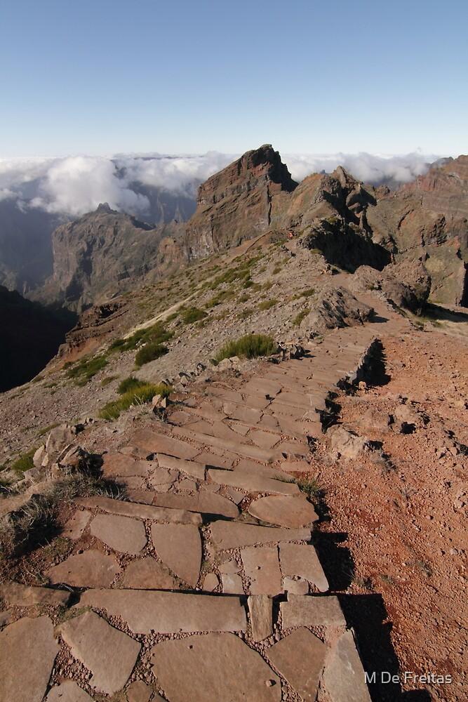 Madeira Island by M De Freitas