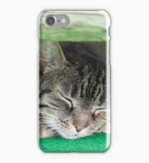 cute cat sleeping under the bench iPhone Case/Skin