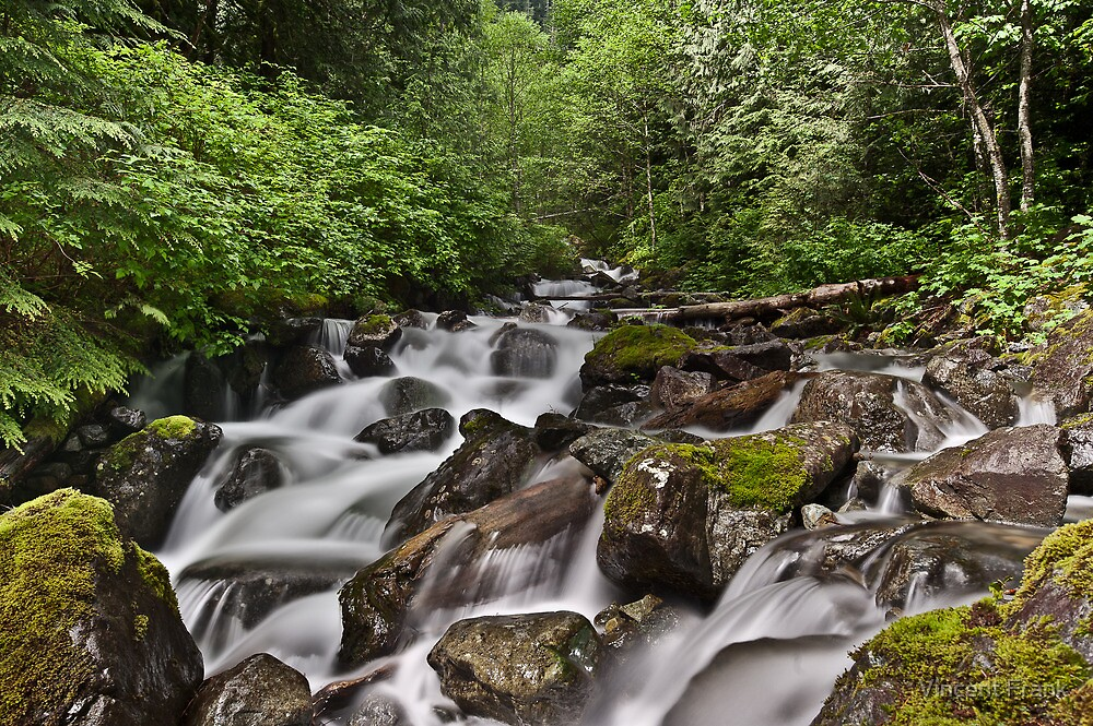 Lower Twin Falls - Olallie State Park, WA U.S.A. by Vincent Frank