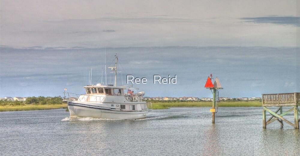 Sunday Sail by Ree  Reid
