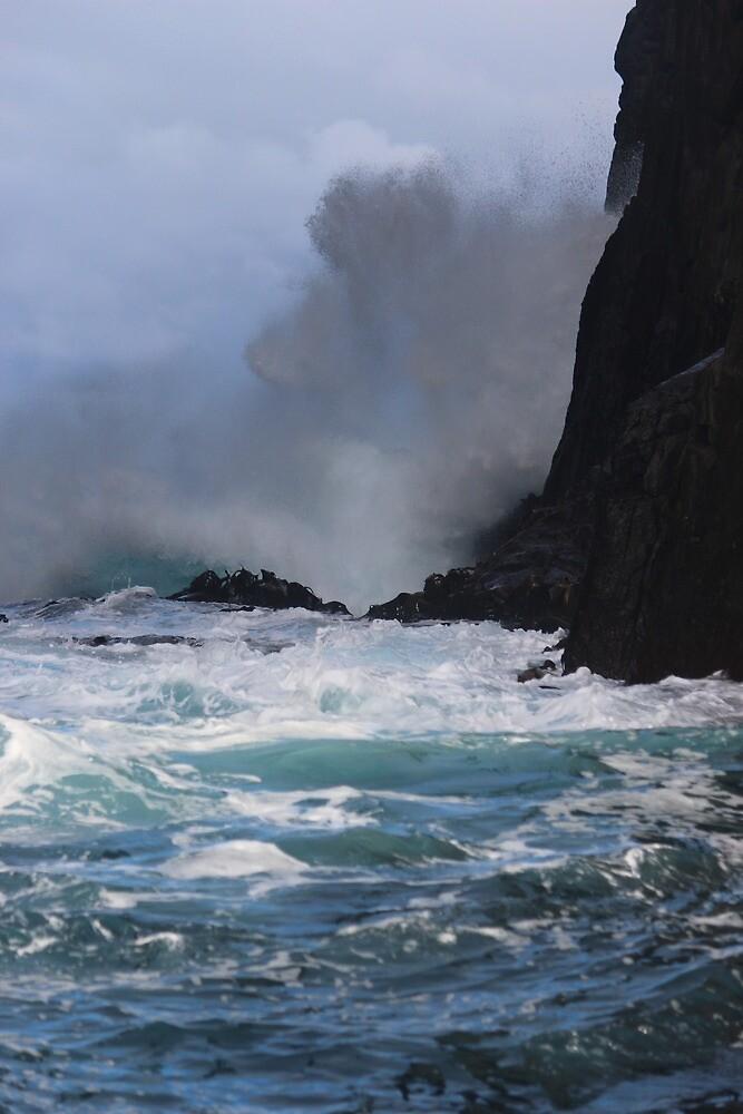 Tasman Island Cruise water display by gaylene