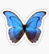 Butterfly Effect Sticker