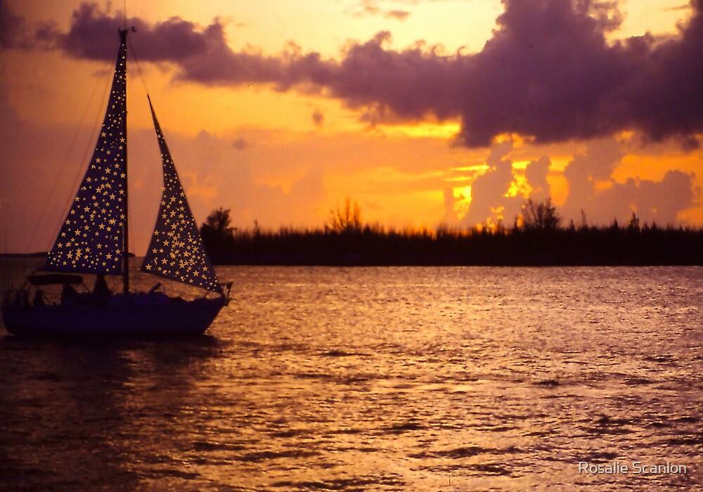 Key West Sunset in Gold by Rosalie Scanlon