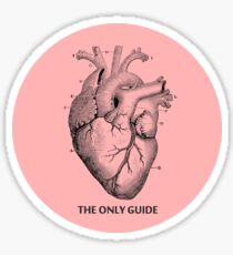 The only guide Sticker