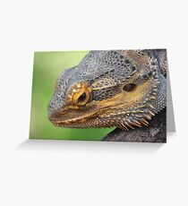 """The """"Dude"""" Greeting Card"""