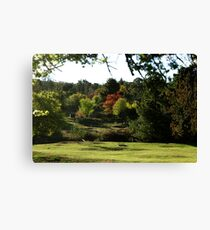 Hill End Common Canvas Print